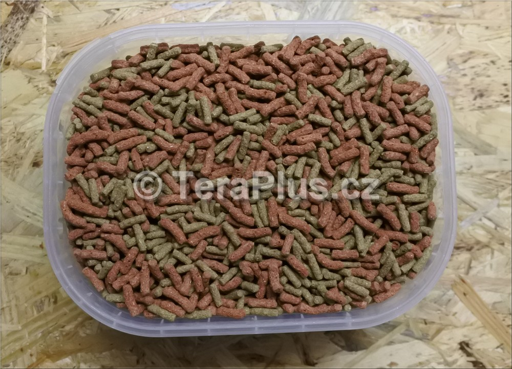 TeraPlus European Tortoise Sticks